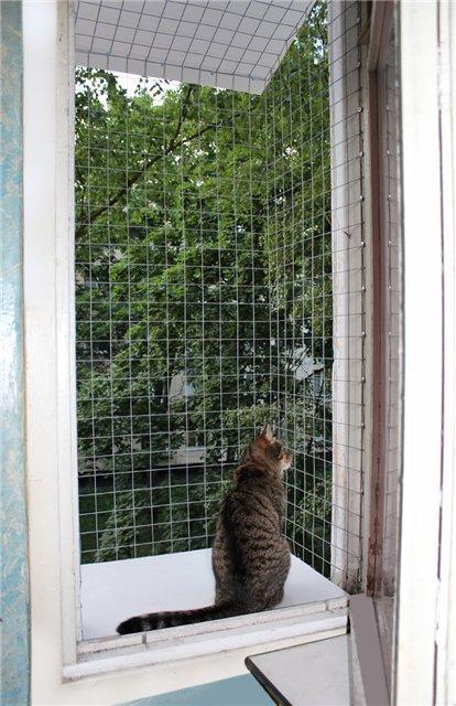 Решетки на окна своими руками от кошки